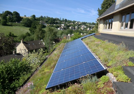 Solar panels with Living Roof